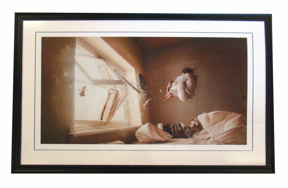 limited edition framing  - A perfect Vacuum - Jeremy Geddes